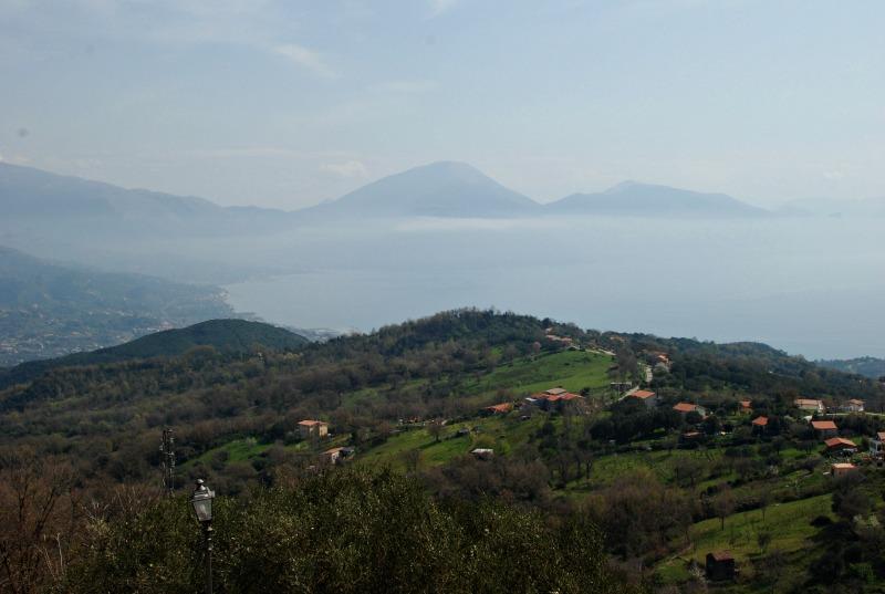 panorama_ortega