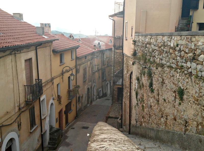Novi_uliveto_Cilento_veduta_scale